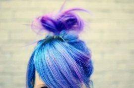 bluebun