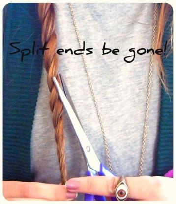 split ends, tips, DIY